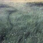 Kapi – Za njom pada trava
