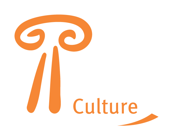eu-culture