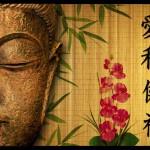Budin Zen [Tema: Zen]