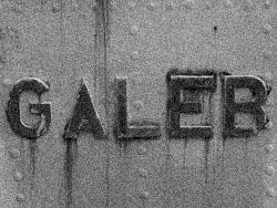 galeb1