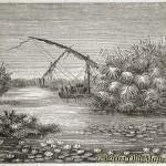 Čudesna rijeka [Tema: Imaginarna mjesta]
