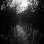 Odbrana i poslednji dani (7) – Vode i zlobe nikad nestati neće [Tema: Pekić]