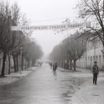 Trijade – Cirkusant i Cetinje