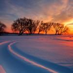 U zimski sumrak [Tema: Raičković]