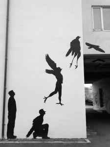 pesoa ptice