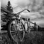 Biciklisti – Sioran, Bukovski, Harms i – dijete Kinaski