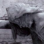 Kapi (12) – Savojka Kosača je nosila tovar soli na ledjima