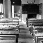 Umberto Galimberti: Škola – Ne ulazi se u istinu bez ljubavi
