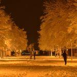Prvi snijeg [Tema: Vito]
