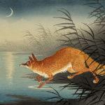 Kineska lisica [Tema: Fantastična zoologija]