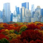 Ella Fitzgerald & Louis Armstrong – Autumn in New York [Tema: Jesen]