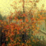 Eric Clapton – Autumn Leaves [Tema: Jesen]