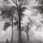 Magia sutra – Stvarnost treba priznati u svoj njenoj celovitosti [Tema: Hamvaš]